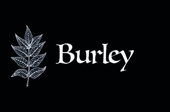 locandina-burley